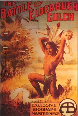 Постер фильма Битва при Элдербушском ущелье (1913)