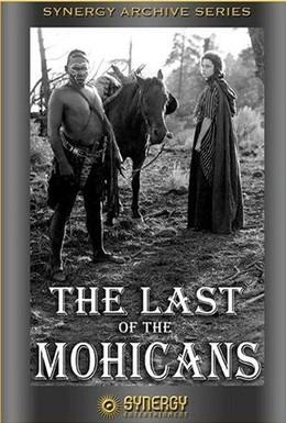 Постер фильма Последний из Могикан (1920)