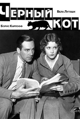 Постер фильма Черный кот (1934)