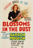 Цветы в пыли (1941)