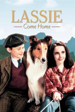Постер фильма Лесси возвращается домой (1943)