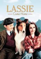 Лесси возвращается домой (1943)
