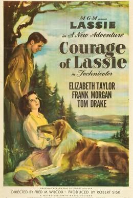 Постер фильма Храбрость Лесси (1946)
