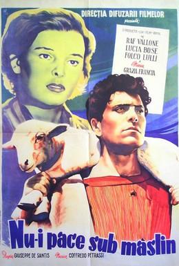Постер фильма Нет мира под оливами (1950)