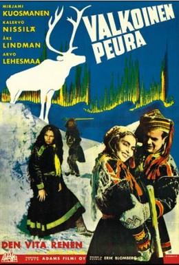 Постер фильма Белый олень (1952)