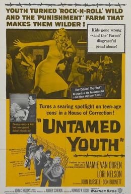 Постер фильма Неукротимая молодежь (1957)
