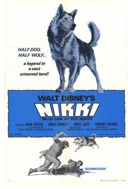 Постер фильма Дикий пес Севера (1961)