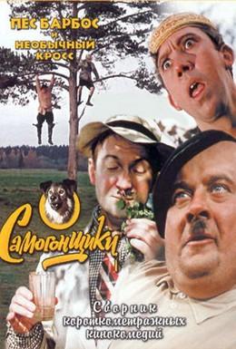Постер фильма Пес Барбос и необычный кросс (1961)