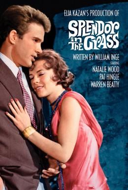 Постер фильма Великолепие в траве (1961)