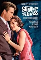 Великолепие в траве (1961)