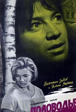 Постер фильма Половодье (1963)