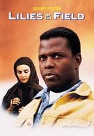 Полевые лилии (1963)
