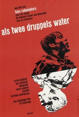 Постер фильма Как две капли воды (1963)