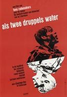 Как две капли воды (1963)