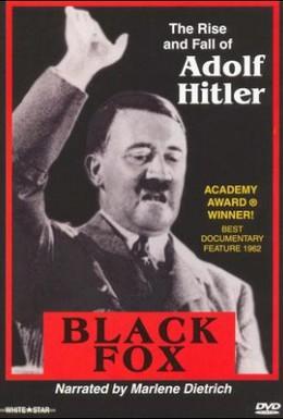Постер фильма Черная лиса: Правда об Адольфе Гитлере (1962)