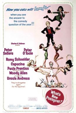 Постер фильма Что нового, кошечка? (1965)