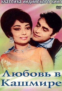 Постер фильма Любовь в Кашмире (1965)
