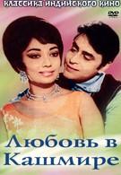 Любовь в Кашмире (1965)