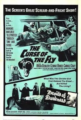 Постер фильма Проклятие мухи (1965)