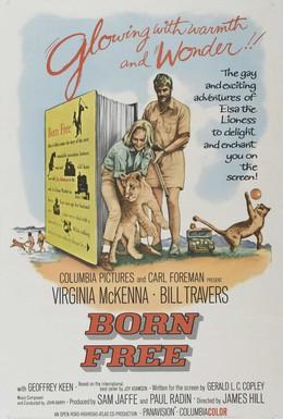 Постер фильма Рожденная свободной (1966)