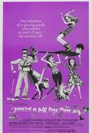Ты теперь большой мальчик (1966)