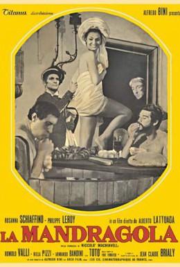 Постер фильма Мандрагора (1965)