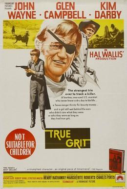 Постер фильма Настоящее мужество (1969)
