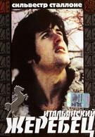 Итальянский жеребец (1970)