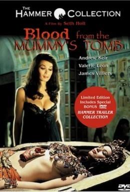Постер фильма Кровь из гробницы мумии (1971)