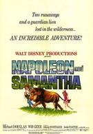Наполеон и Саманта (1972)