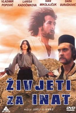 Постер фильма Наперекор всему (1974)