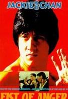 Кулак возмездия (1973)