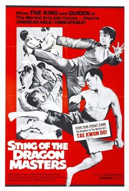 Постер фильма Жало мастера-дракона (1973)