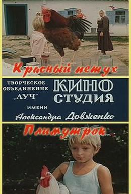 Постер фильма Красный петух плимутрок (1975)