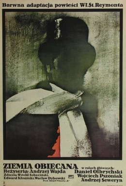 Постер фильма Земля обетованная (1975)