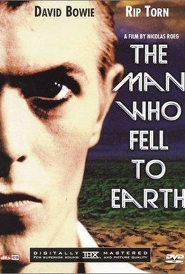 Постер фильма Человек, который упал на Землю (1976)
