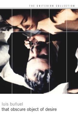 Постер фильма Этот смутный объект желания (1977)