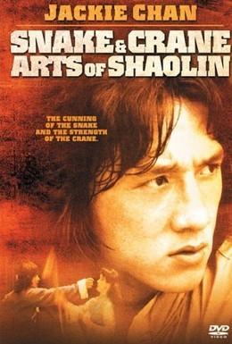 Постер фильма Искусство Шаолиня – змея и журавль (1978)