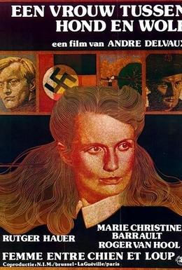 Постер фильма Женщина между собакой и волком (1979)