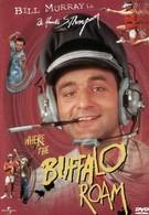 Там, где бродит бизон (1980)
