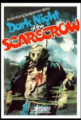 Постер фильма Темная ночь пугала (1981)
