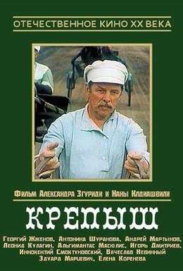 Постер фильма Крепыш (1981)