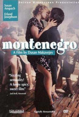 Постер фильма Монтенегро (1981)