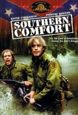 Постер фильма Южное гостеприимство (1981)