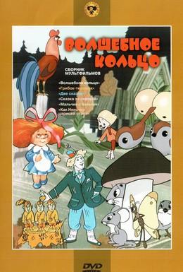 Постер фильма Волшебное кольцо (1979)