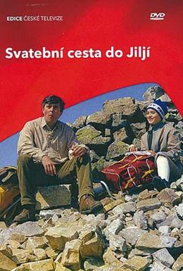Постер фильма Свадебное путешествие в Илью (1983)