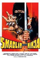 Шаолинь против ниндзя (1983)