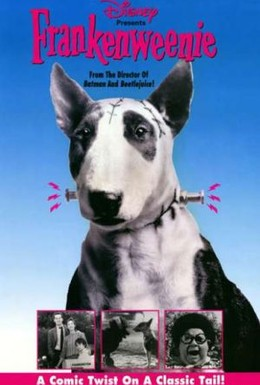 Постер фильма Франкенвини (1984)