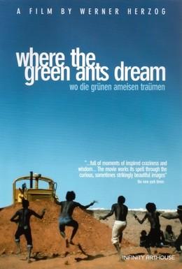 Постер фильма Там, где мечтают зеленые муравьи (1984)