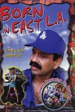 Постер фильма Рожденный в восточном Лос-Анджелесе (1987)